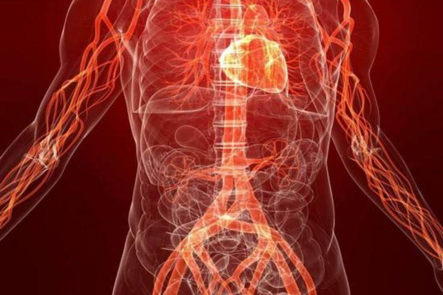 Поганий кровообіг: 8 симптомів, які можуть говорити про це